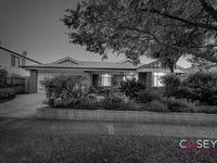 19 Tenterfield Drive, Narre Warren South, Vic 3805