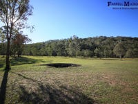 Lot 251, Armidale Road, Blaxlands Creek, NSW 2460