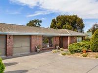 19 Palomino Avenue, McLaren Vale, SA 5171