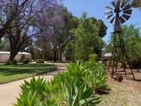 888 Thiele Road, Loveday, SA 5345