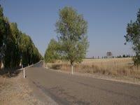 134 Casaurina Lane, Jeir, NSW 2582