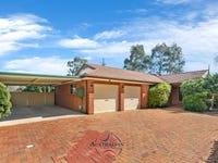 38 Maslin Crescent, Quakers Hill, NSW 2763