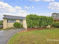 20 Flinders Avenue, Camden South, NSW 2570