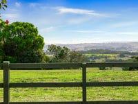599 Cowlong Road, McLeans Ridges, NSW 2480