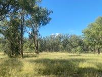 695 Coybil Road, Weetaliba, NSW 2395