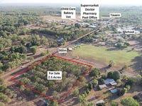 10 Hamilton Road, Howard Springs, NT 0835