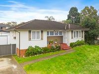 60 Heckenberg Avenue, Busby, NSW 2168