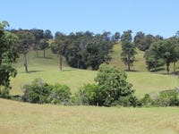 Lots 248 249 152 153 Reedy Creek Road, Dignams Creek, NSW 2546