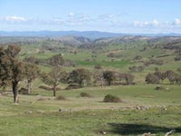 328 Common Rd, Bowning, NSW 2582
