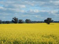 Avondale - Lockhart Collingullie Road, Lockhart, NSW 2656