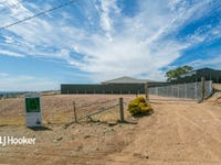 Lot 43B, Coomurra Drive, Salisbury Heights, SA 5109