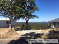 33 Eastern Valley Way, Tallwoods Village, NSW 2430