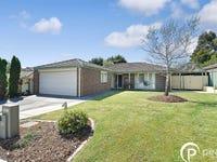 23 Ellenvale Drive, Narre Warren, Vic 3805