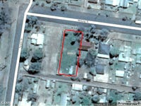 100 Molong Street, Condobolin, NSW 2877