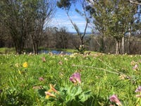 563 Little Forest Road, Little Forest, NSW 2538