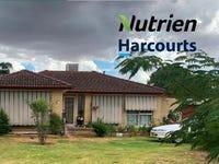 53 Cutler Avenue, Cootamundra, NSW 2590