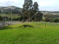 33 Francis Avenue, Gundagai, NSW 2722