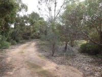 lot 250, 31 Old Blanchetown Road, Waikerie, SA 5330