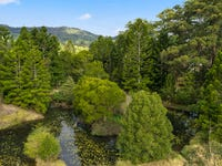 11A Alternative Way, Nimbin, NSW 2480