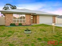 11 Appaloosa Place, Tamworth, NSW 2340
