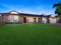 13 Bunya Place, Spring Farm, NSW 2570