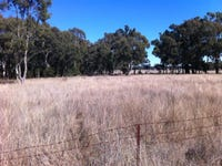 Lot 1 Gamble Creek Road, Binnaway, NSW 2395