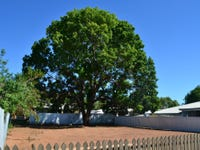 33 Delacour Drive, Mount Isa, Qld 4825
