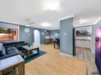 11 Cotula Place, Macquarie Fields, NSW 2564