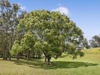96 Trees Road, Tallebudgera, Qld 4228