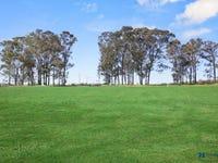 31 Stringybark Drive, Wilton, NSW 2571
