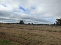 Lot 36 River Road, Forbes, NSW 2871
