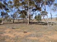 300 Mills Rd, Beetaloo Valley, SA 5523