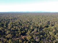 214 Foxglen Lane, Jacks Creek, NSW 2390