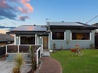 19 Alhambra Avenue, Macquarie Hills, NSW 2285