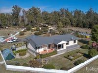 480 Jensens Road, Scottsdale, Tas 7260