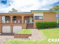 65 Alhambra Avenue, Macquarie Hills, NSW 2285