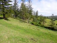 Martins Rd, Norfolk Island, NSW 2899