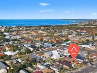 235 Shellharbour Road, Barrack Heights, NSW 2528