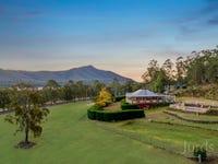 699 Wollombi Road, Broke, NSW 2330