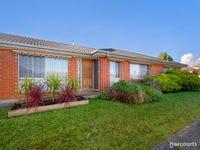 17 Dinwoodie Drive, Newborough, Vic 3825