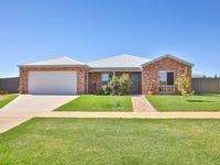 18 Livingstone Drive, Gol Gol, NSW 2738