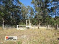 Lot 1 Hills Lane, Barraganyatti, NSW 2441