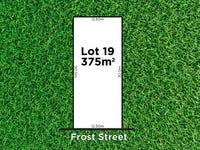 19 Frost Street, Newton, SA 5074