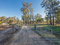 13 Green Lane, Lovedale, NSW 2325