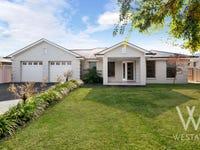 3 Willott Close, Eglinton, NSW 2795