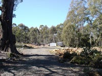 407 Arthurs Lake Road, Arthurs Lake, Tas 7030