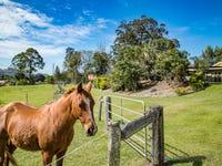 48 Hazelwood Drive, Pottsville, NSW 2489