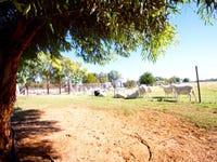 12 Bass Lane, Pomona, NSW 2648