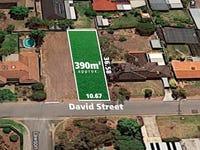10 David Street, Happy Valley, SA 5159