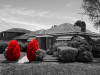 40 Chisholm Avenue, Clemton Park, NSW 2206